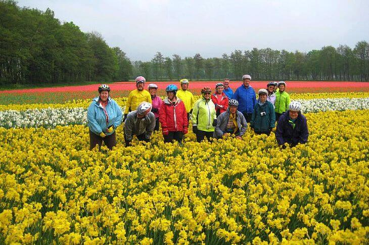 North-South Holland Tulip Tour