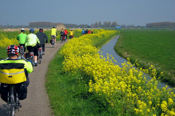 Bike and Boat Holland: Flowers and the Green Heart of Holland